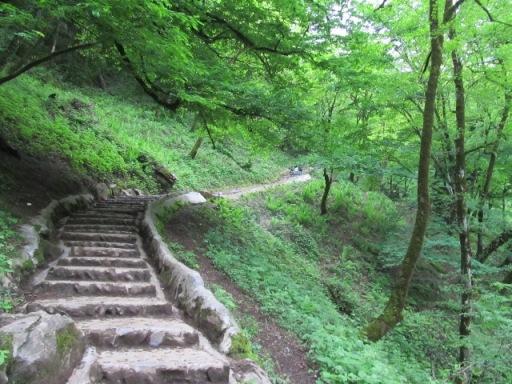 هزار پله قلعه رود خان