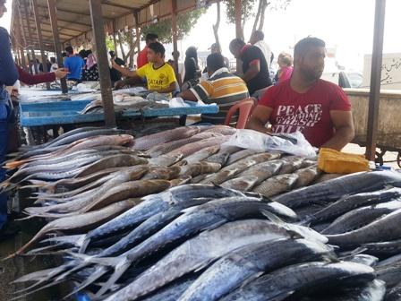 بازار ماهی بندر عباس