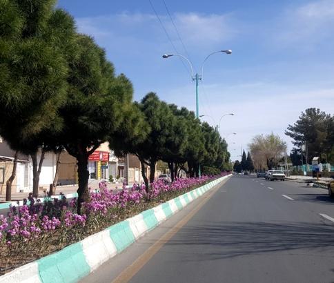 شهر رفسنجان تمیز
