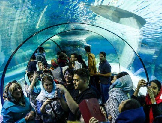 تونل اکواریوم اصفهان
